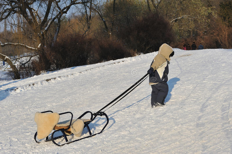 Download Boy with sled stock photo. Image of childhood, cold, seasonal - 27234450