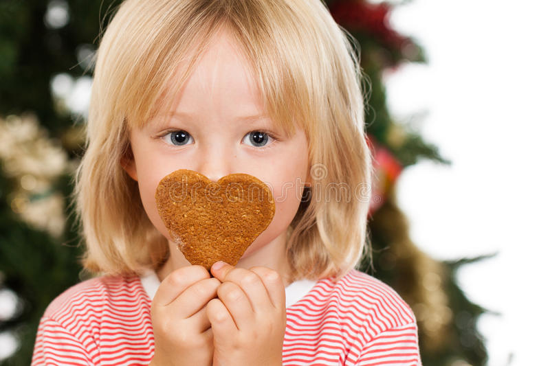 Boy smelling gingerbread cookie. A cute boy smelling a love shaped gingerbread cookie in front of a Christmas tree. on white royalty free stock photo