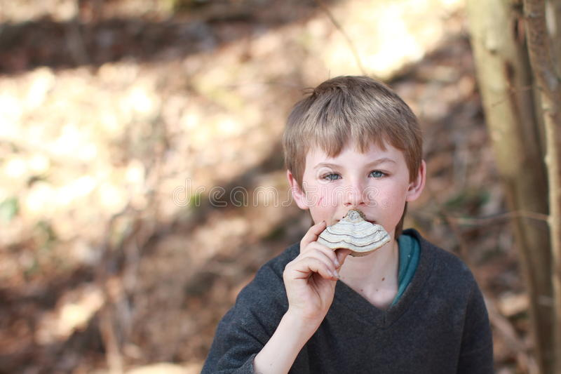 Download Boy Smelling A Scaly Polypore Stock Image - Image: 23884857