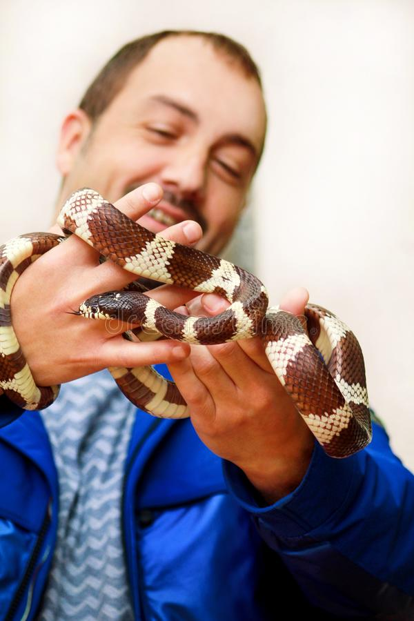 Boy with snakes. Man holds in hands reptile Common King snake Lampropeltis getula kind of snake. stock images