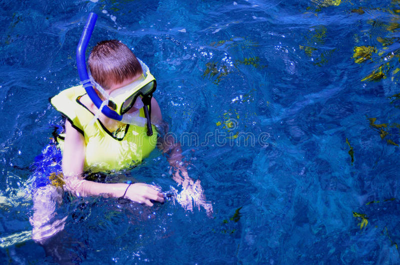 Boy Snorkeling royalty free stock images