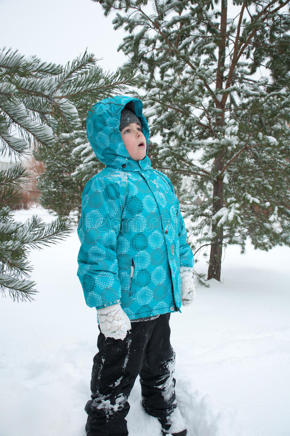 Download Boy  the snowy winter park stock photo. Image of wood - 22967638