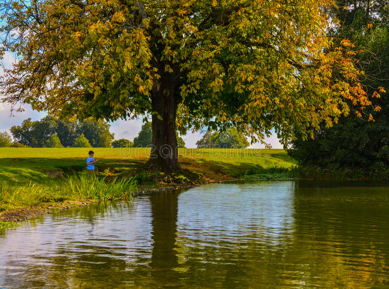 Boy standing by a pond. A young boy standing by a pond next to a beautiful tree late summer/early autumn on a sunny day stock photo