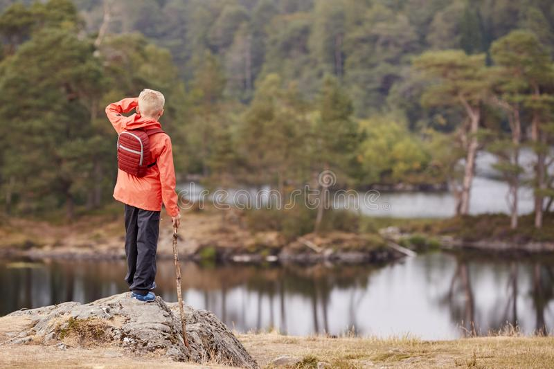 A boy standing on a rock holding a stick, admiring a view of lake, back view, Lake District, UK royalty free stock photography