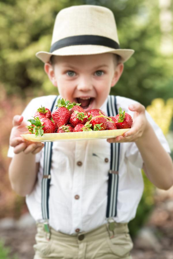 A boy in a straw hat eats ripe fragrant strawberries. royalty free stock photography