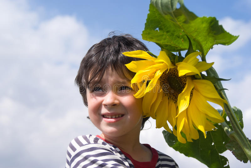 Download The boy and sunflower stock photo. Image of shoulder - 11027568