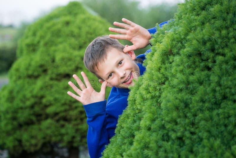 Boy teenager peeking out of a bush.  royalty free stock photos
