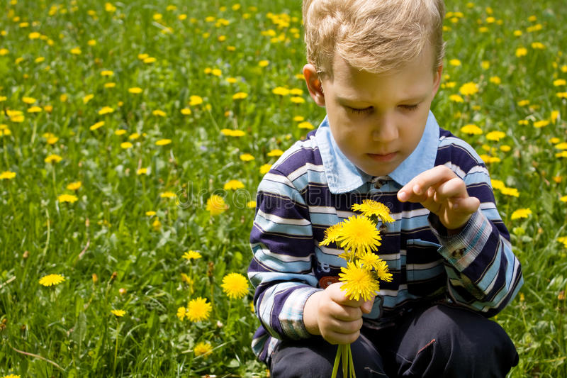 Boy on to the meadow royalty free stock photos