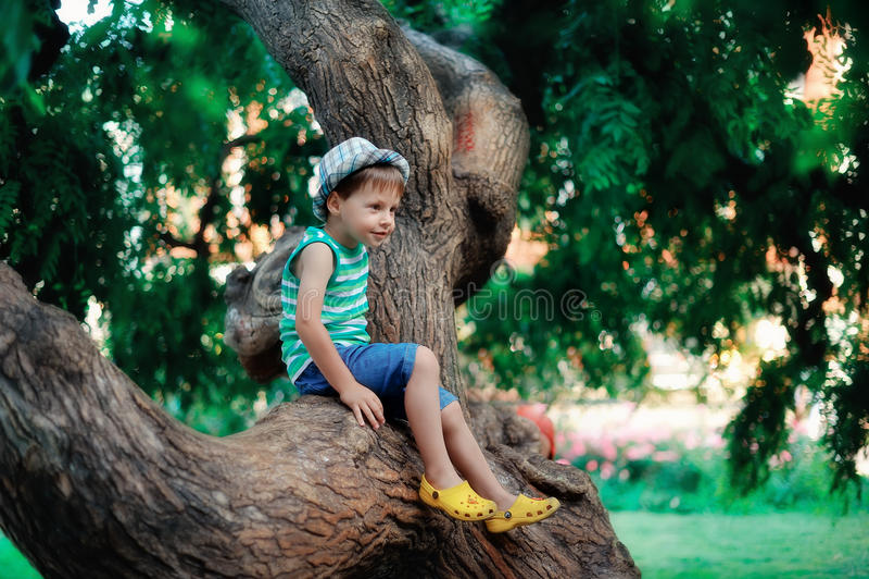 The Boy On A Tree Stock Photos