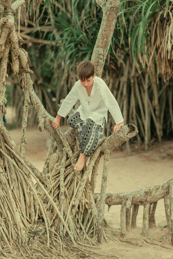 A boy on a tree in pants afghani. A boy in a white shirt and in wide trousers climbing in the roots of a tree stock images