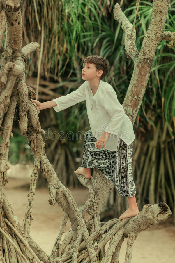 A boy on a tree in pants afghani. A boy in a white shirt and in wide trousers climbing in the roots of a tree royalty free stock photos