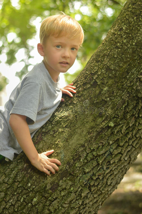 Boy and Trunk stock photography