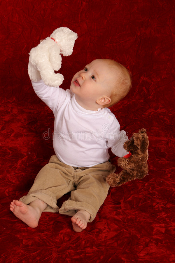Boy with two Bears royalty free stock photos