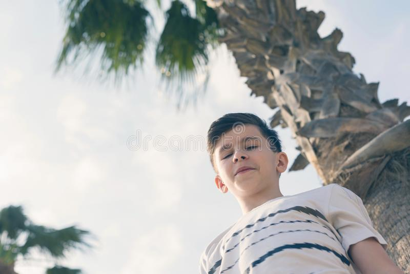 Boy under coconut palm tree and sky stock photos