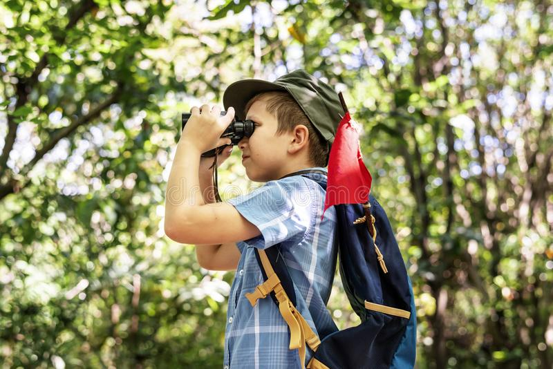 Boy using binoculars in the forest stock image