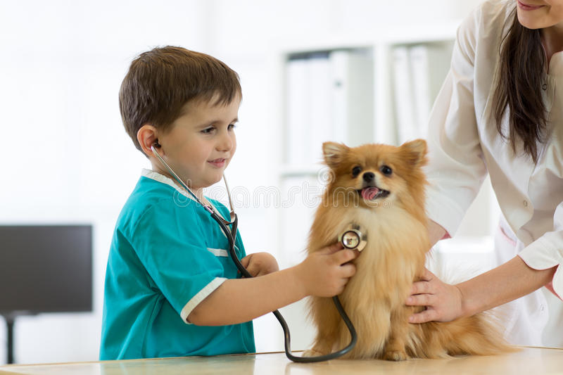 Boy at the veterinary doctor with his dog stock photography