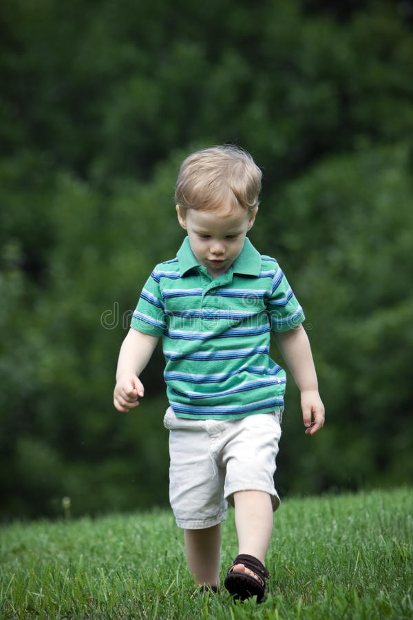Download Boy walking stock photo. Image of young, field, copyspace - 9725442