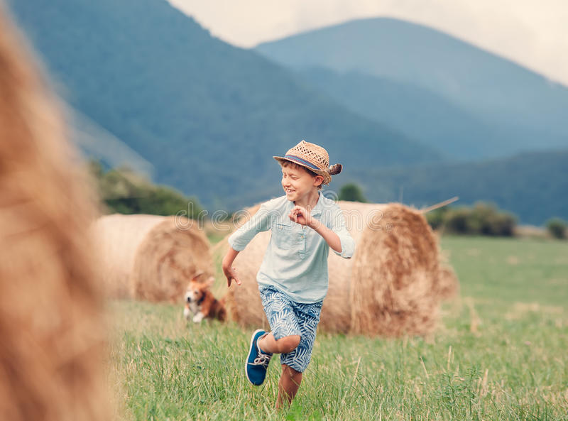 Boy walks with beagle dog on green mountain meadow with haystacks stock photo