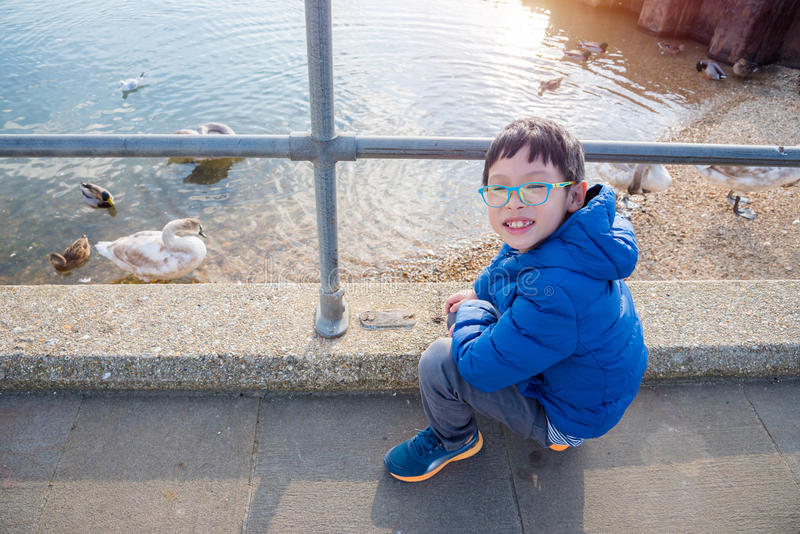 Boy watching ducks and swans in the river stock photography