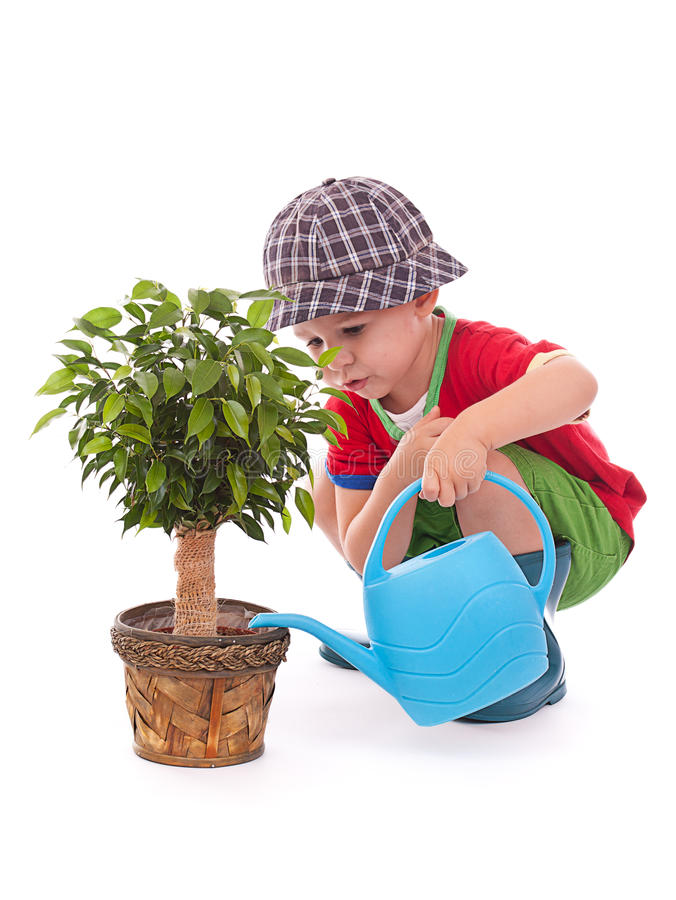 A boy with a watering-can stock photography