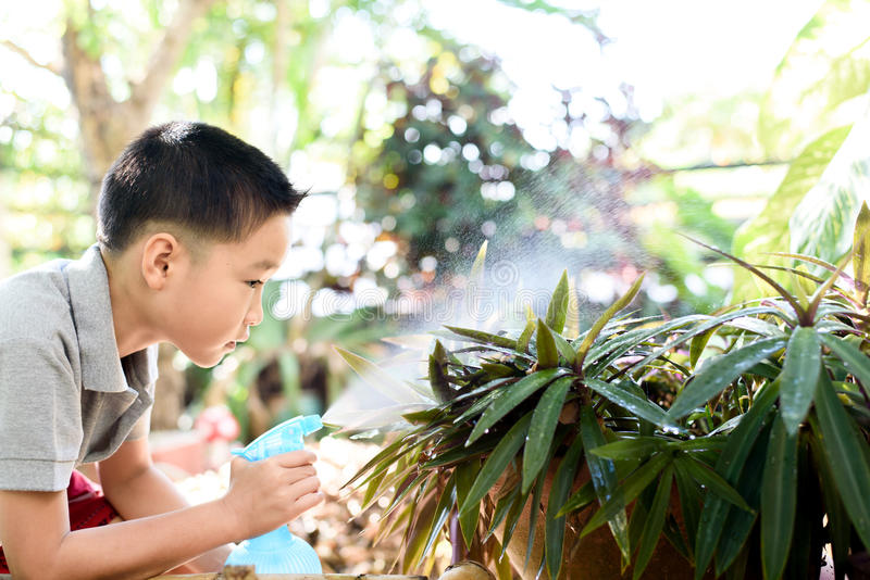 Boy watering garden. Young Thai boy spray water to the plant in his garden at home. Earth day concept royalty free stock photo