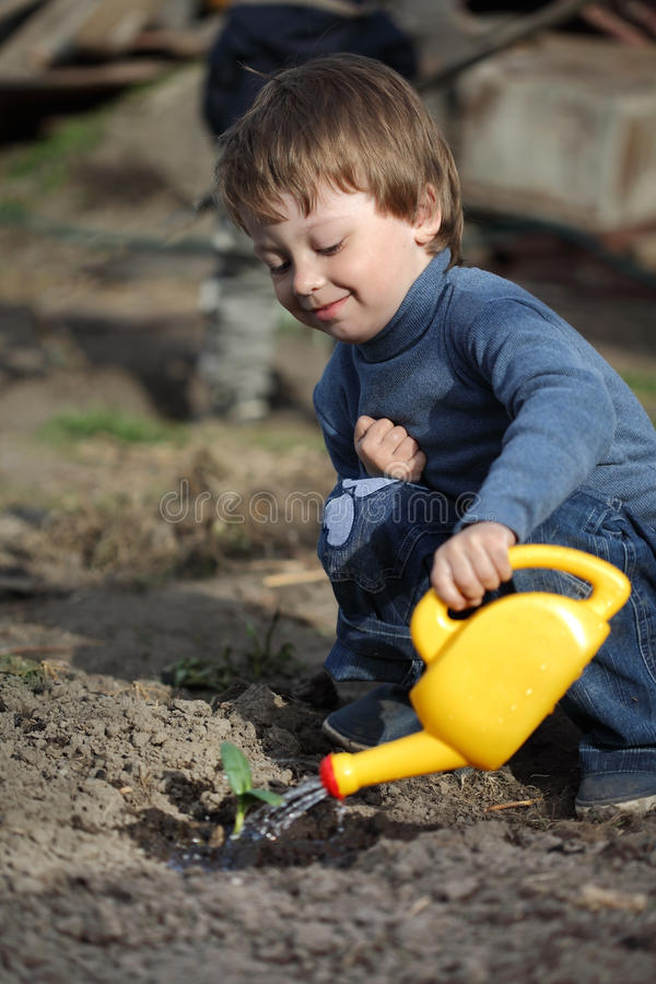 Boy Watering Sprout Royalty Free Stock Photo