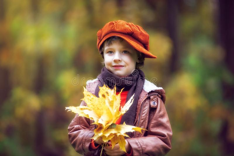 Boy Wearing Brown Leather Jacket Holding Yellow Leaves stock photography