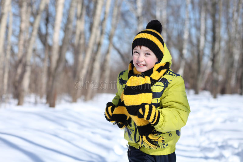Boy in a winter park stock image