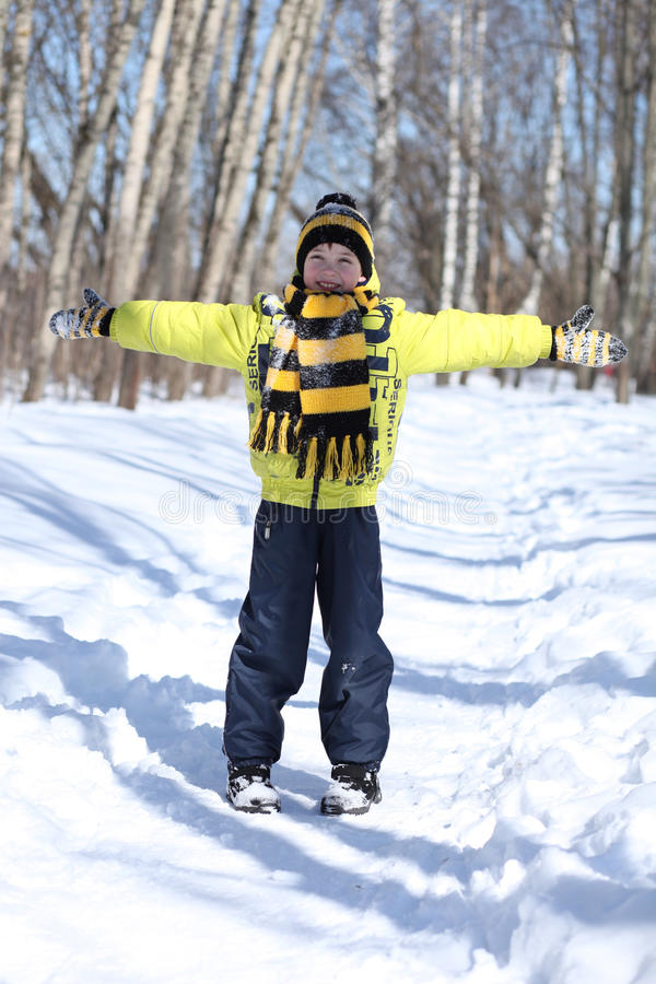 boy in a winter park royalty free stock photography