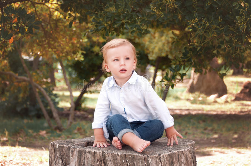 Boy 1 years old sitting on a tree stump on a sunny summer day. K stock images
