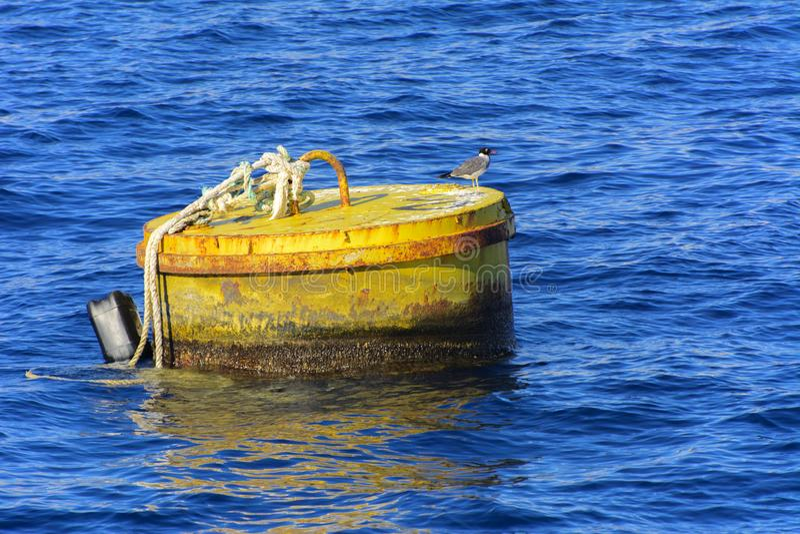 Boya flotante oxidada vieja del mar en el Mar Rojo contra el agua clara clara cerca de los arrecifes de coral viejos foto de archivo