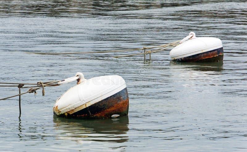 Boyas oxidadas en agua del puerto fotografía de archivo libre de regalías