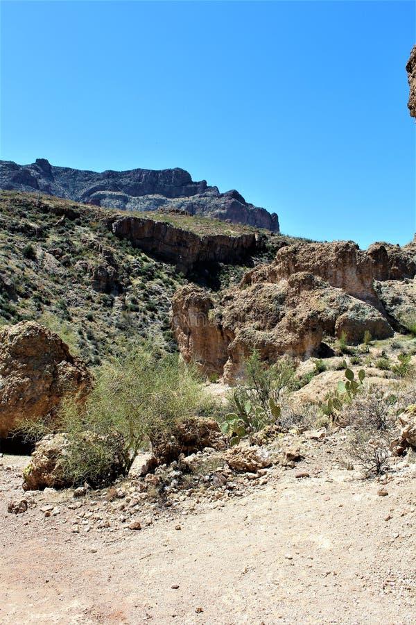 Boyce Thompson arboretum stanu park, przełożony, Arizona Stany Zjednoczone zdjęcia royalty free