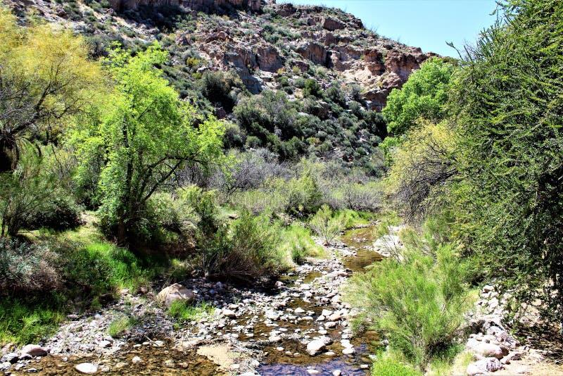 Boyce Thompson arboretum stanu park, przełożony, Arizona Stany Zjednoczone zdjęcie royalty free