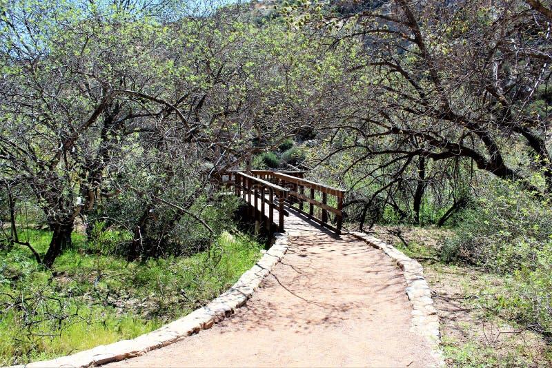 Boyce Thompson Arboretum State Park, Superior, Arizona United States. Main tour trail and desert vegetation at Boyce Thompson Arboretum State Park located at stock photos