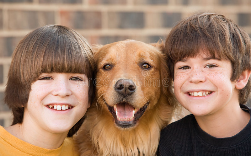 Boys and a Dog stock photography