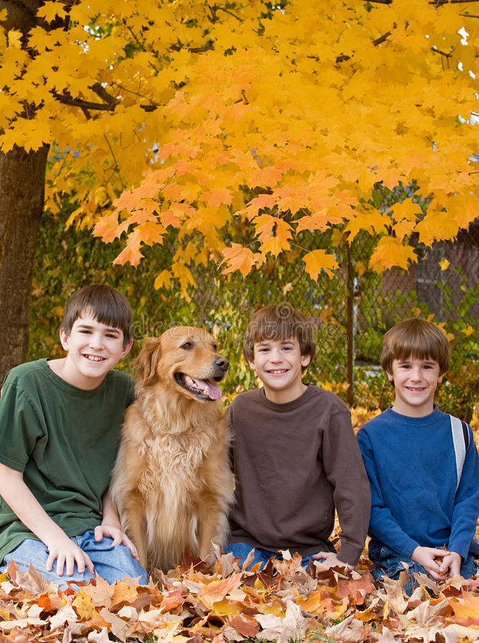 Boys in the Fall Leaves royalty free stock photos