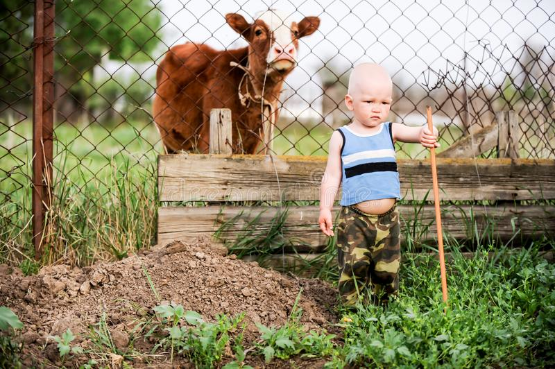 Boys feed chickens and farm animals on their father`s farm in the countryside stock photo