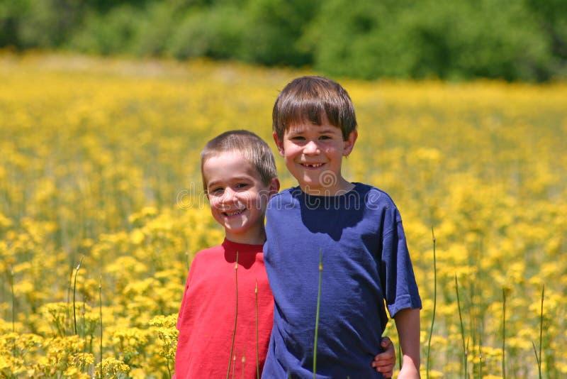 Boys in a flower Field stock photos