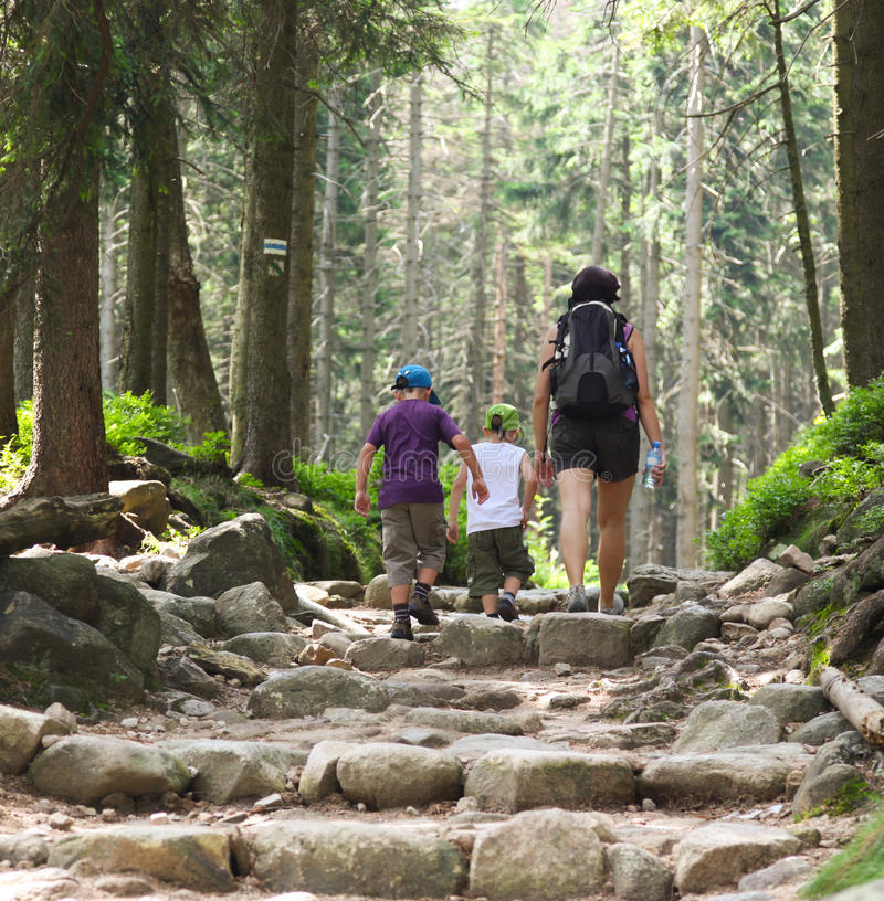 Download Boys And Mother In The Wood. Stock Image - Image: 26531773