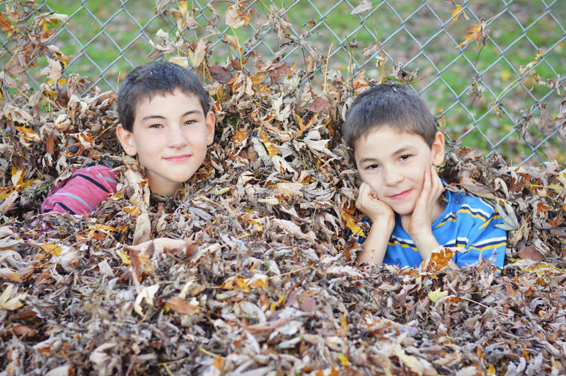 Boys in Pile of Leaves stock photo