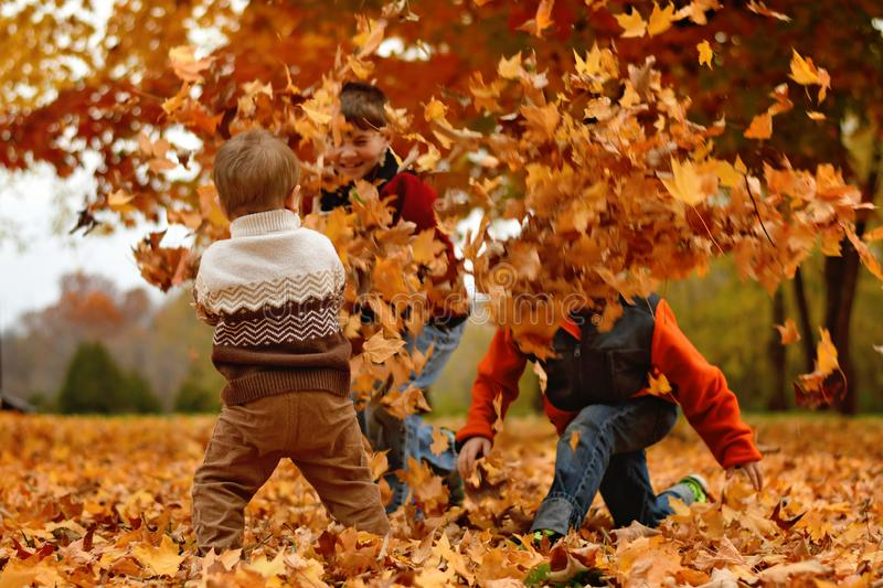 Boys playing in the Autumn leaves royalty free stock photos