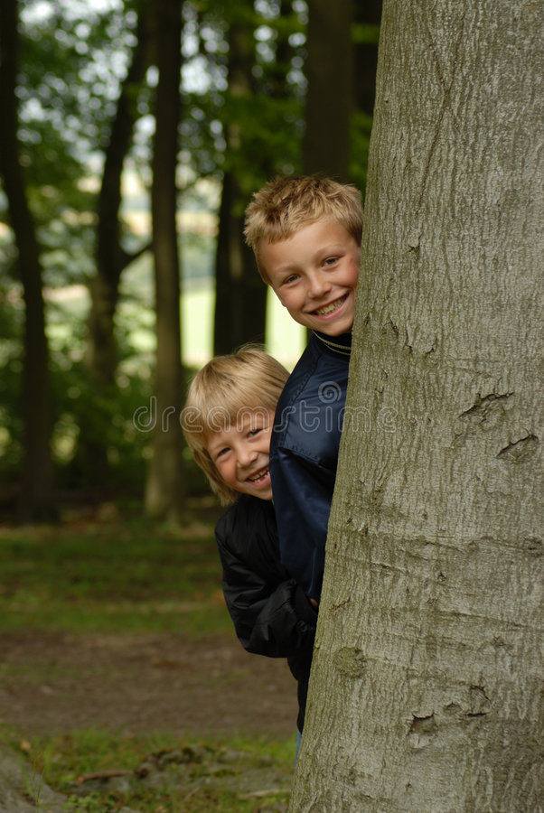 Boys in the Wood. Two young boys peek around a tree in a shady wood stock photography