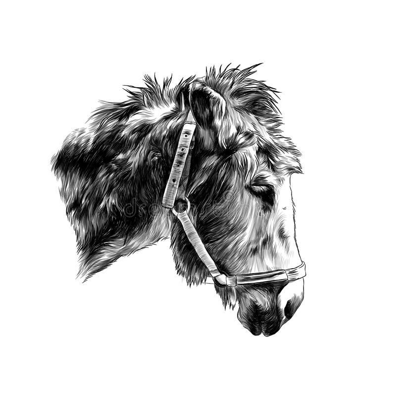 Bozal del asno con las correas en perfil stock de ilustración
