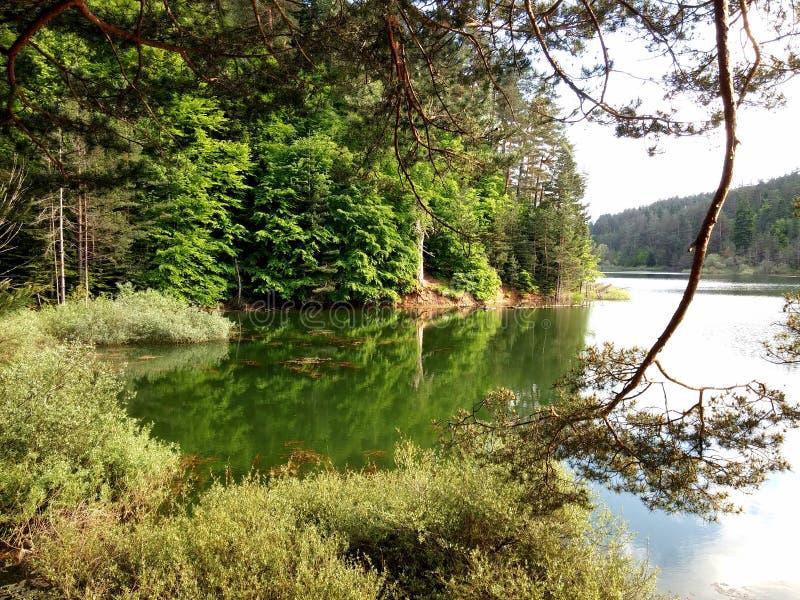 Bozcaarmut湖 免版税库存照片