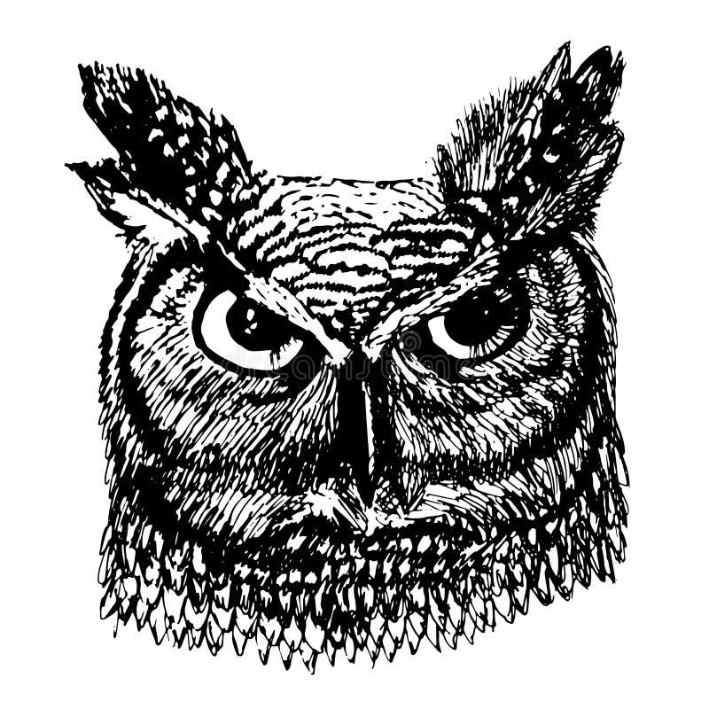 Boze lang-eared uil met de kleurrijke illustratie van de verenschets stock illustratie