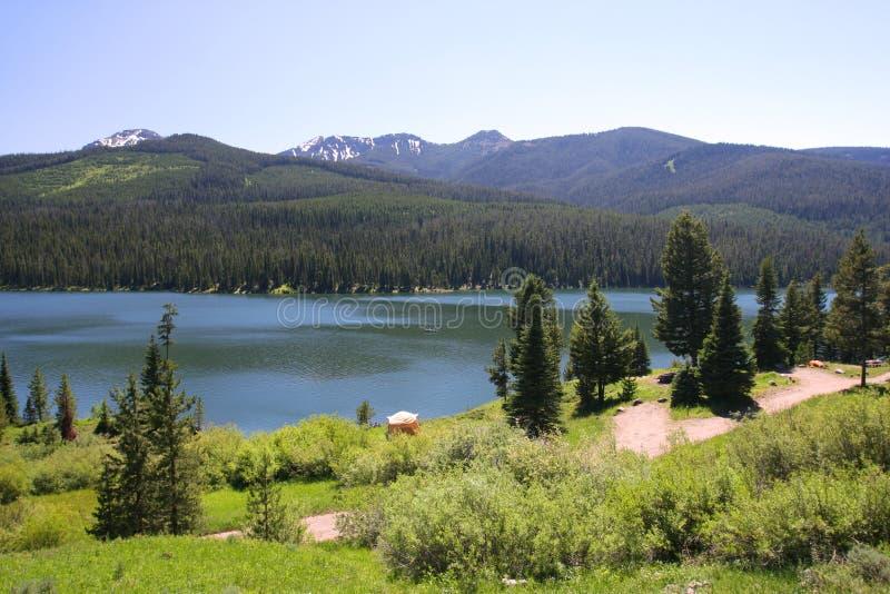 bozeman national för lake för skoggallatinhighlite arkivbild
