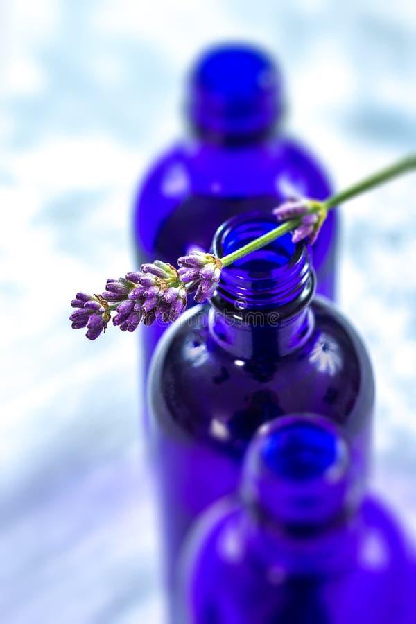 Bpttle blu dei fiori della lavanda e del petrolio essenziale immagine stock libera da diritti