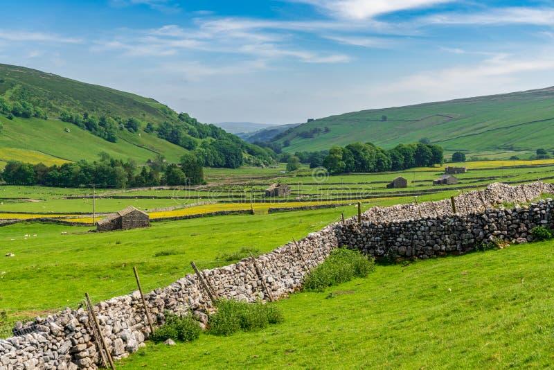 Brânquia de Halton, North Yorkshire, Inglaterra, Reino Unido fotografia de stock