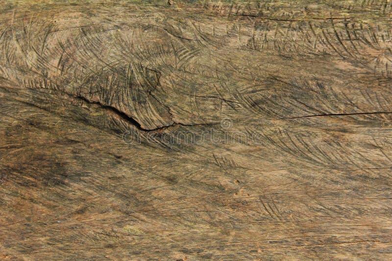 Bräde för tappning för bästa sikt wood, slut upp gammal wood modell och texturbakgrund arkivbilder